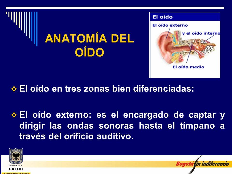 ANATOMÍA DEL OÍDO El oído en tres zonas bien diferenciadas: El oído externo: es el encargado de captar y dirigir las ondas sonoras hasta el tímpano a