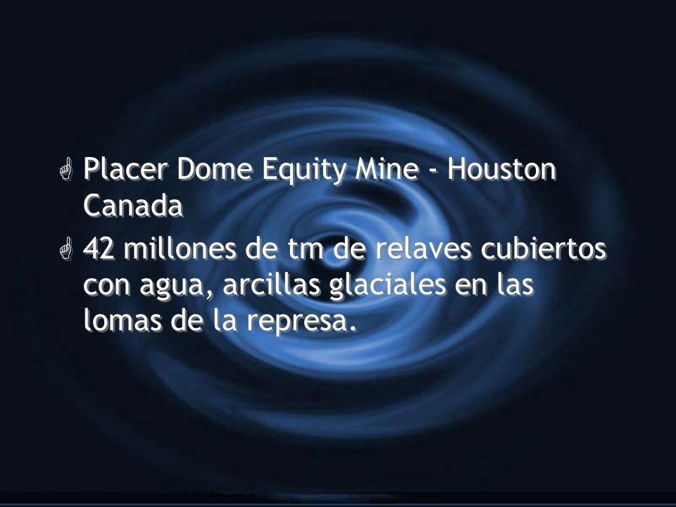 G Placer Dome Equity Mine - Houston Canada G 42 millones de tm de relaves cubiertos con agua, arcillas glaciales en las lomas de la represa. G Placer