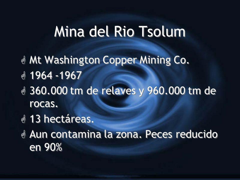 Mina del Rio Tsolum G Mt Washington Copper Mining Co. G 1964 -1967 G 360.000 tm de relaves y 960.000 tm de rocas. G 13 hectáreas. G Aun contamina la z