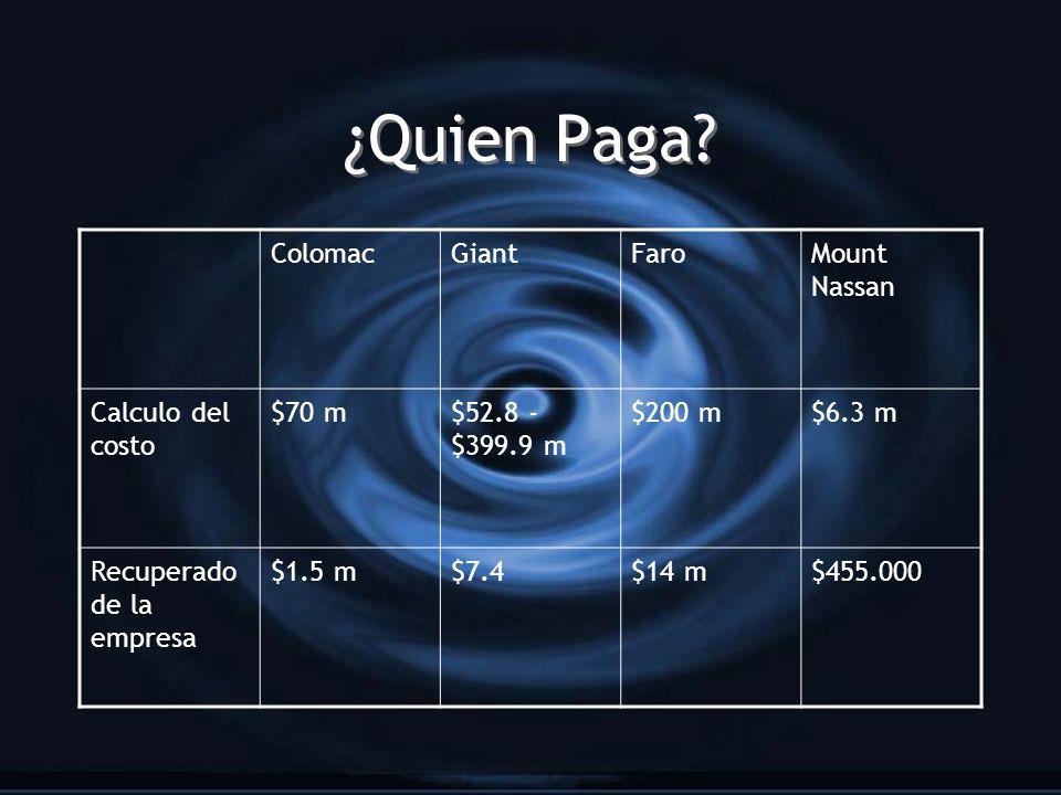 ¿Quien Paga? ColomacGiantFaroMount Nassan Calculo del costo $70 m$52.8 - $399.9 m $200 m$6.3 m Recuperado de la empresa $1.5 m$7.4$14 m$455.000