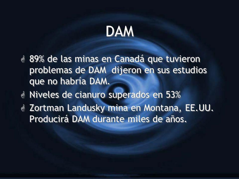 DAM G 89% de las minas en Canadá que tuvieron problemas de DAM dijeron en sus estudios que no habría DAM. G Niveles de cianuro superados en 53% G Zort