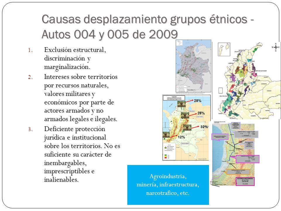 Causas desplazamiento grupos étnicos - Autos 004 y 005 de 2009 1.