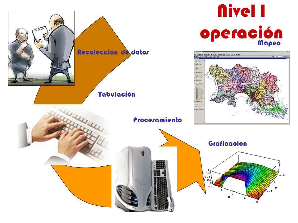 Nivel I operación Recolección de datos Tabulación Procesamiento Graficacion Mapeo