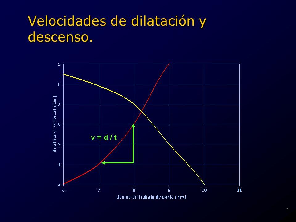 Velocidades de dilatación y descenso. v = d / t.