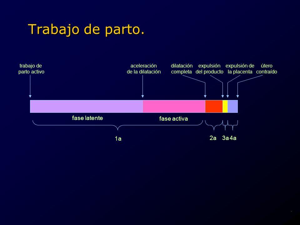Trabajo de parto. fase latente fase activa1a 2a3a4a dilatación completa expulsión del producto expulsión de la placenta útero contraído trabajo de par