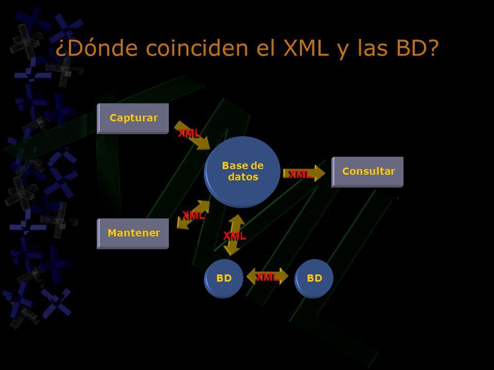 ¿Dónde coinciden el XML y las BD Base de datos Capturar Mantener BD Consultar XML