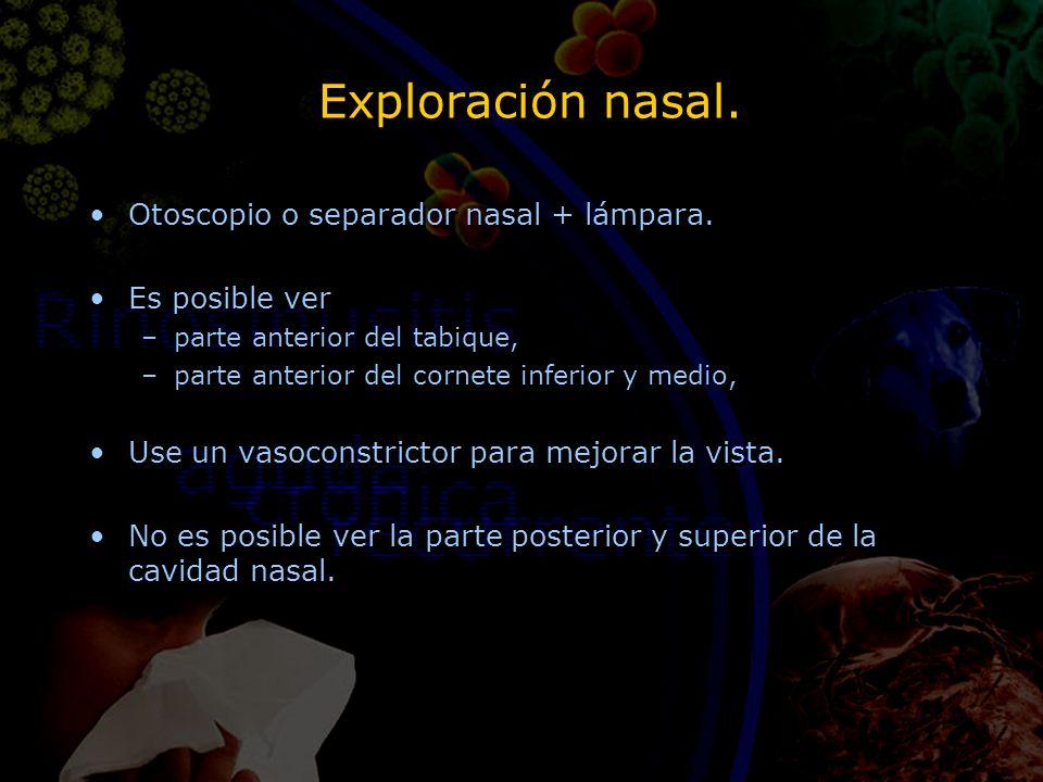 Exploración nasal. Otoscopio o separador nasal + lámpara. Es posible ver –parte anterior del tabique, –parte anterior del cornete inferior y medio, Us