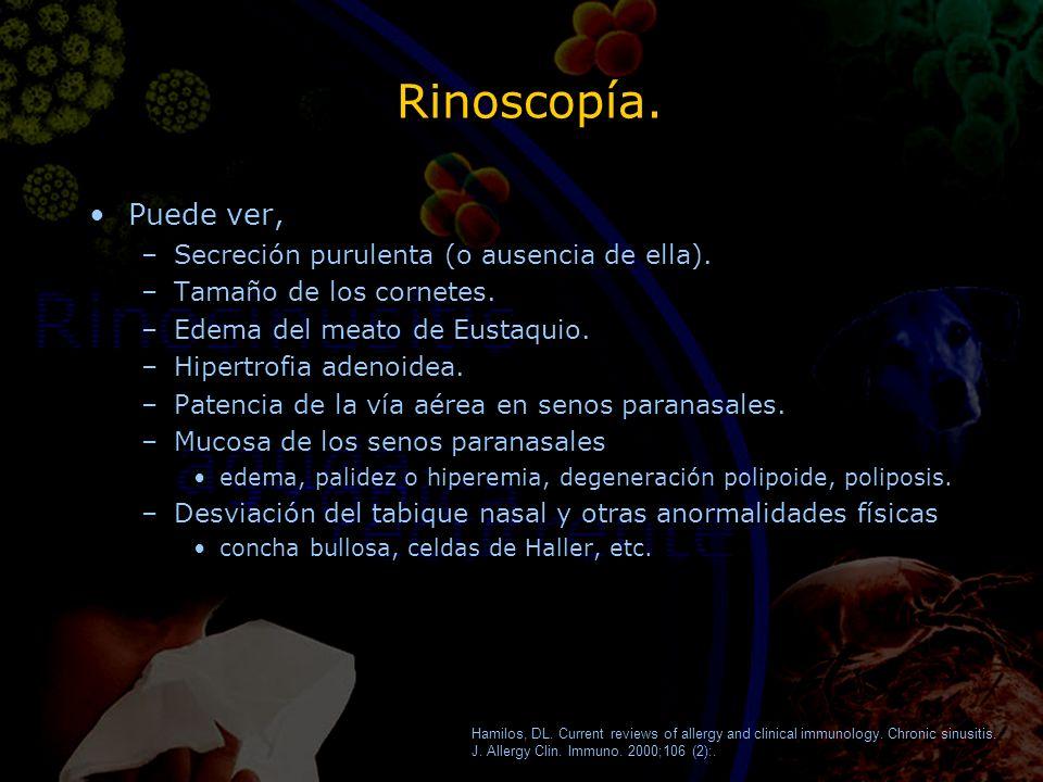 Rinoscopía. Puede ver, –Secreción purulenta (o ausencia de ella). –Tamaño de los cornetes. –Edema del meato de Eustaquio. –Hipertrofia adenoidea. –Pat