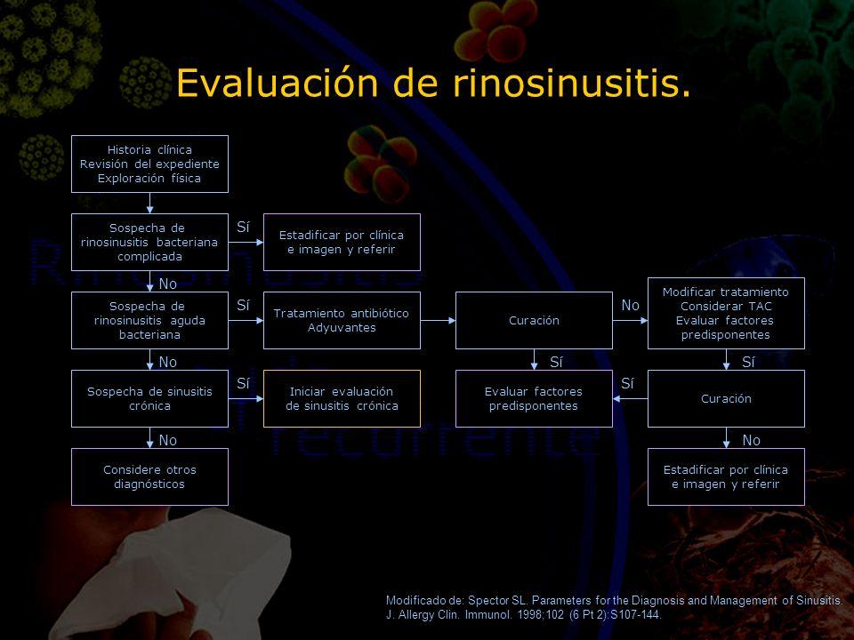 Evaluación de rinosinusitis. Historia clínica Revisión del expediente Exploración física Sospecha de rinosinusitis aguda bacteriana Sospecha de sinusi