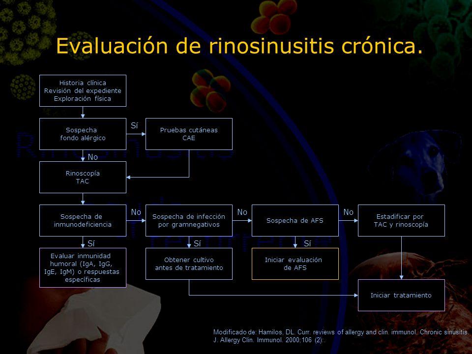 Evaluación de rinosinusitis crónica. Historia clínica Revisión del expediente Exploración física Rinoscopía TAC Sospecha de inmunodeficiencia Evaluar
