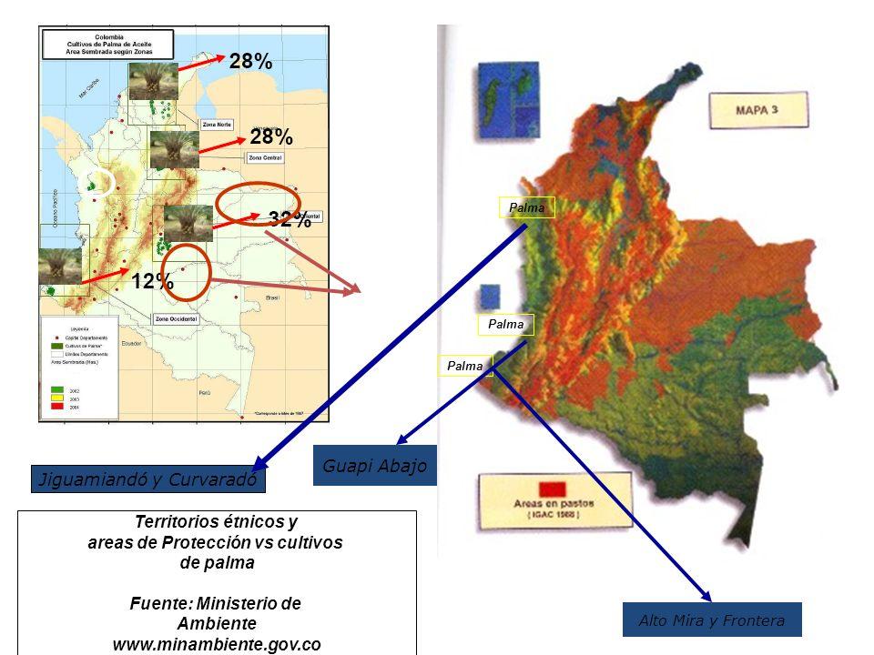 Territorios étnicos y areas de Protección vs cultivos de palma Fuente: Ministerio de Ambiente www.minambiente.gov.co Palma Jiguamiandó y Curvaradó Gua