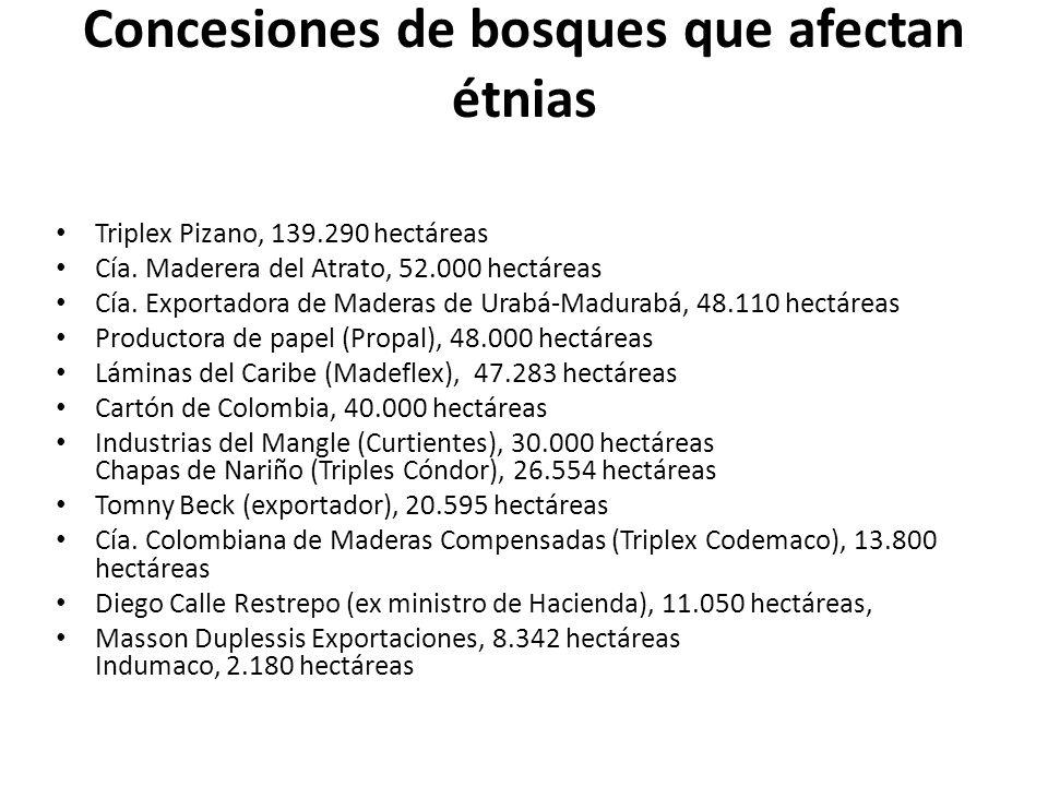 Concesiones de bosques que afectan étnias Triplex Pizano, 139.290 hectáreas Cía. Maderera del Atrato, 52.000 hectáreas Cía. Exportadora de Maderas de