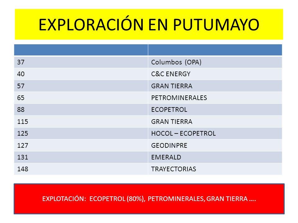 EXPLORACIÓN EN PUTUMAYO 37Columbos (OPA) 40C&C ENERGY 57GRAN TIERRA 65PETROMINERALES 88ECOPETROL 115GRAN TIERRA 125HOCOL – ECOPETROL 127GEODINPRE 131E