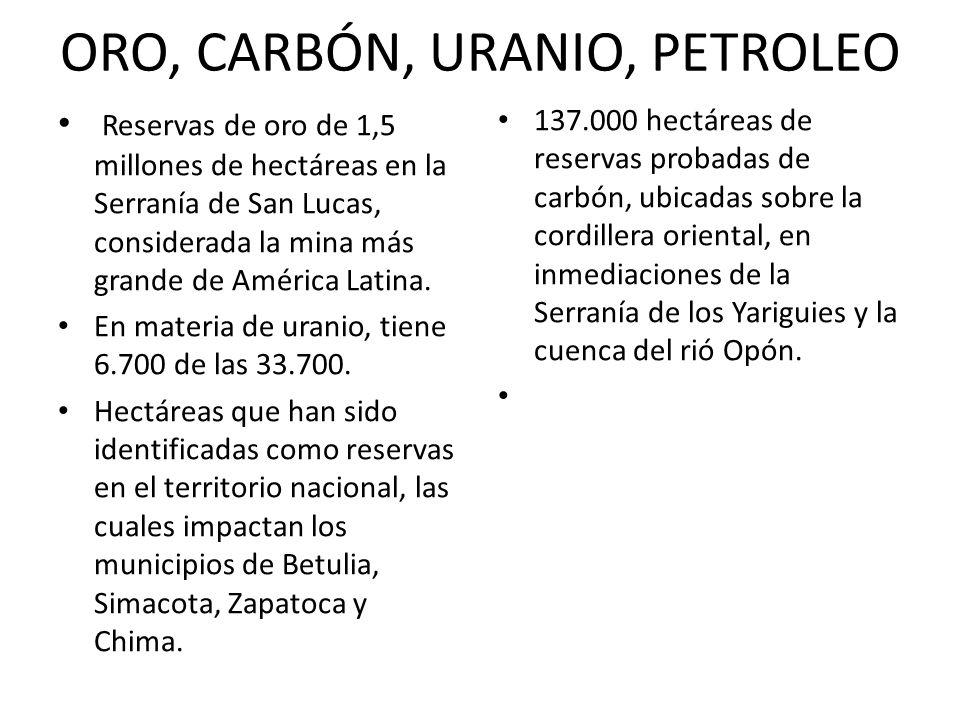 ORO, CARBÓN, URANIO, PETROLEO Reservas de oro de 1,5 millones de hectáreas en la Serranía de San Lucas, considerada la mina más grande de América Lati