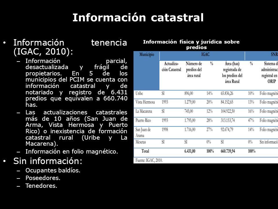 Información catastral Información tenencia (IGAC, 2010): – Información parcial, desactualizada y frágil de propietarios. En 5 de los municipios del PC