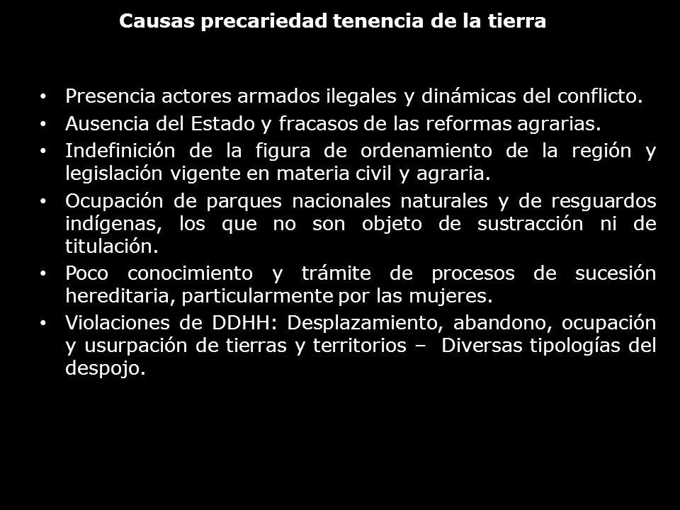 Causas precariedad tenencia de la tierra Presencia actores armados ilegales y dinámicas del conflicto. Ausencia del Estado y fracasos de las reformas