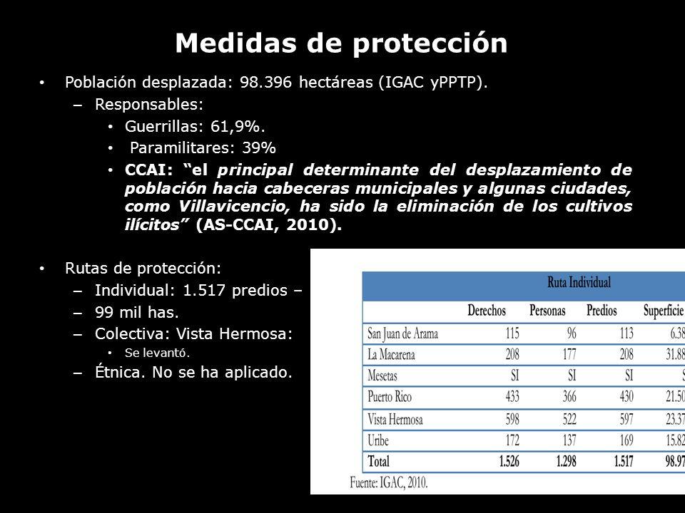 Población desplazada: 98.396 hectáreas (IGAC yPPTP). – Responsables: Guerrillas: 61,9%. Paramilitares: 39% CCAI: el principal determinante del desplaz