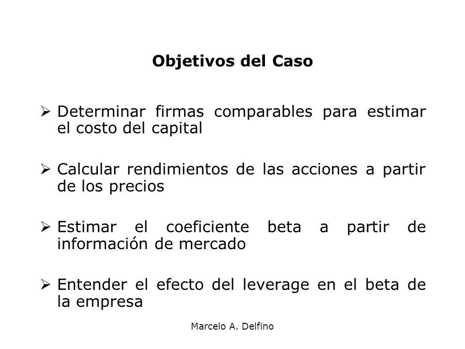 Marcelo A. Delfino Objetivos del Caso Determinar firmas comparables para estimar el costo del capital Calcular rendimientos de las acciones a partir d