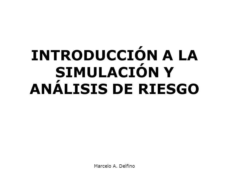 Marcelo A. Delfino INTRODUCCIÓN A LA SIMULACIÓN Y ANÁLISIS DE RIESGO