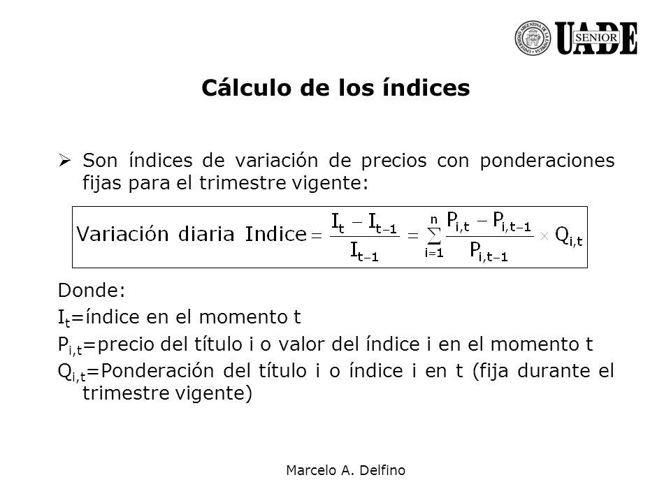 Marcelo A. Delfino Cálculo de los índices Son índices de variación de precios con ponderaciones fijas para el trimestre vigente: Donde: I t =índice en