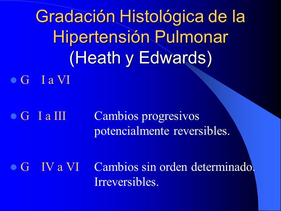 Gradación Histológica de la Hipertensión Pulmonar (Heath y Edwards) G I a VI GI a IIICambios progresivos potencialmente reversibles. G IV a VI Cambios