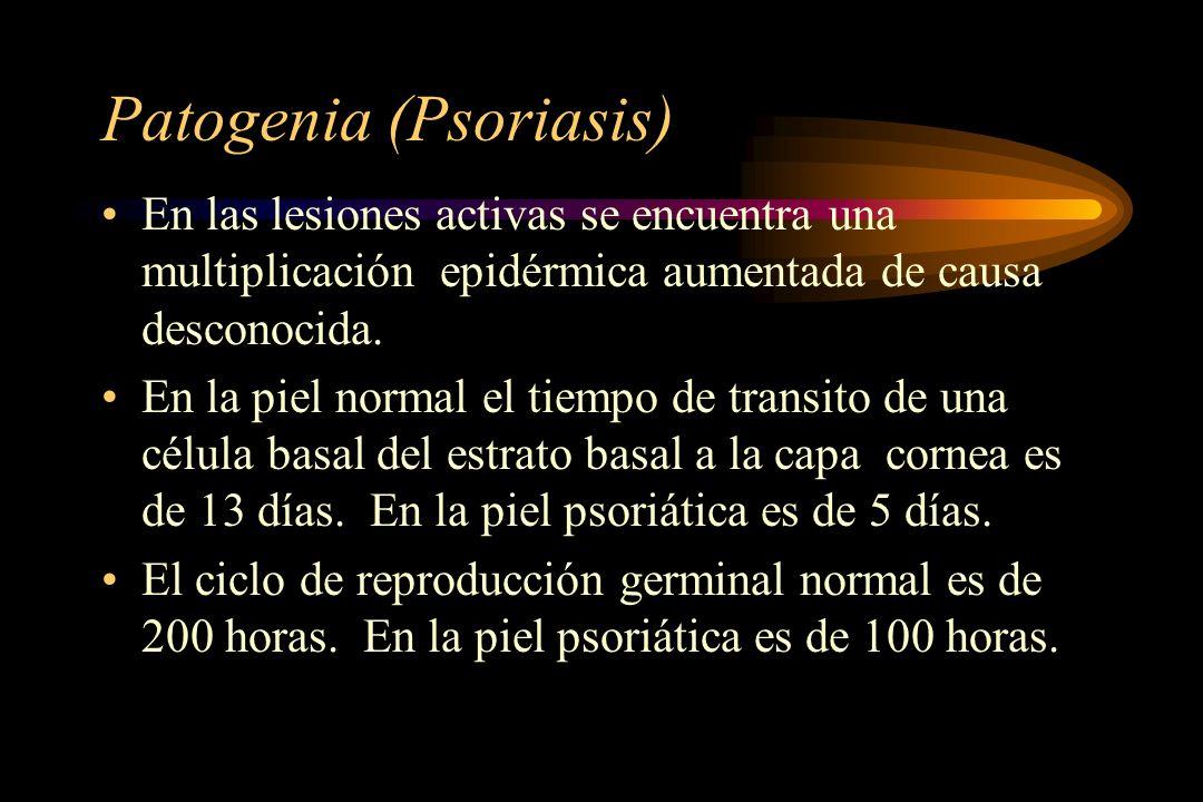 Patogenia (Psoriasis) En las lesiones activas se encuentra una multiplicación epidérmica aumentada de causa desconocida. En la piel normal el tiempo d