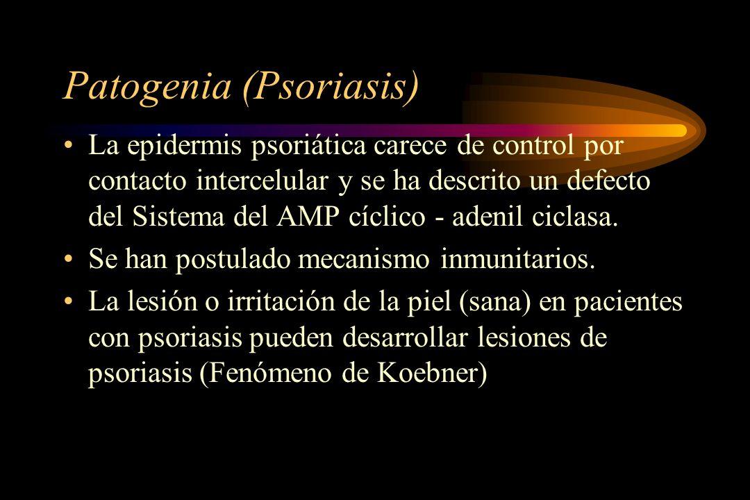 Patogenia (Psoriasis) La epidermis psoriática carece de control por contacto intercelular y se ha descrito un defecto del Sistema del AMP cíclico - ad