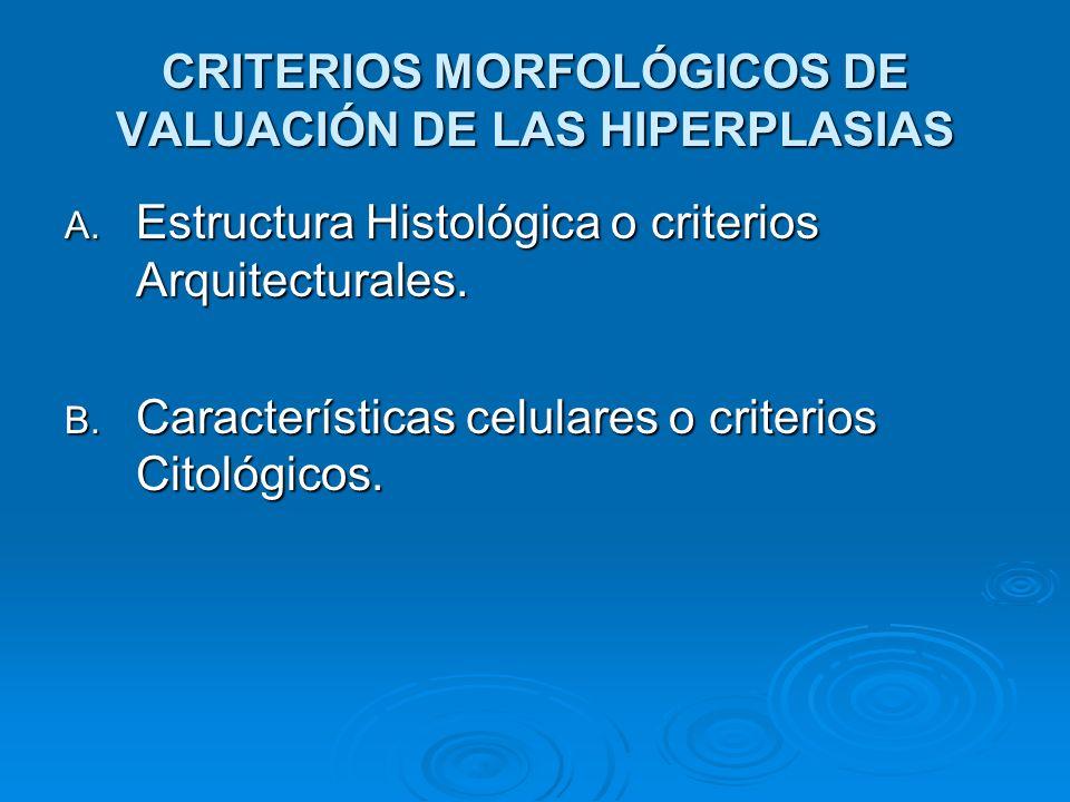 CRITERIOS MORFOLÓGICOS DE VALUACIÓN DE LAS HIPERPLASIAS A. Estructura Histológica o criterios Arquitecturales. B. Características celulares o criterio