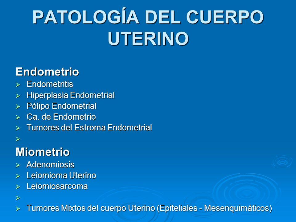 PATOLOGÍA DEL CUERPO UTERINO Endometrio Endometritis Endometritis Hiperplasia Endometrial Hiperplasia Endometrial Pólipo Endometrial Pólipo Endometria