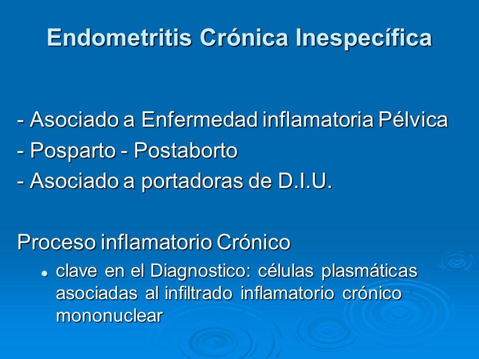 Endometritis Crónica Inespecífica - Asociado a Enfermedad inflamatoria Pélvica - Posparto - Postaborto - Asociado a portadoras de D.I.U. Proceso infla