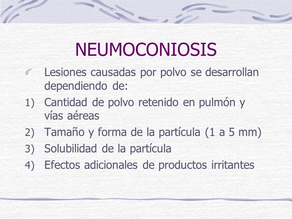 NEUMOCONIOSIS Lesiones causadas por polvo se desarrollan dependiendo de: 1) Cantidad de polvo retenido en pulmón y vías aéreas 2) Tamaño y forma de la