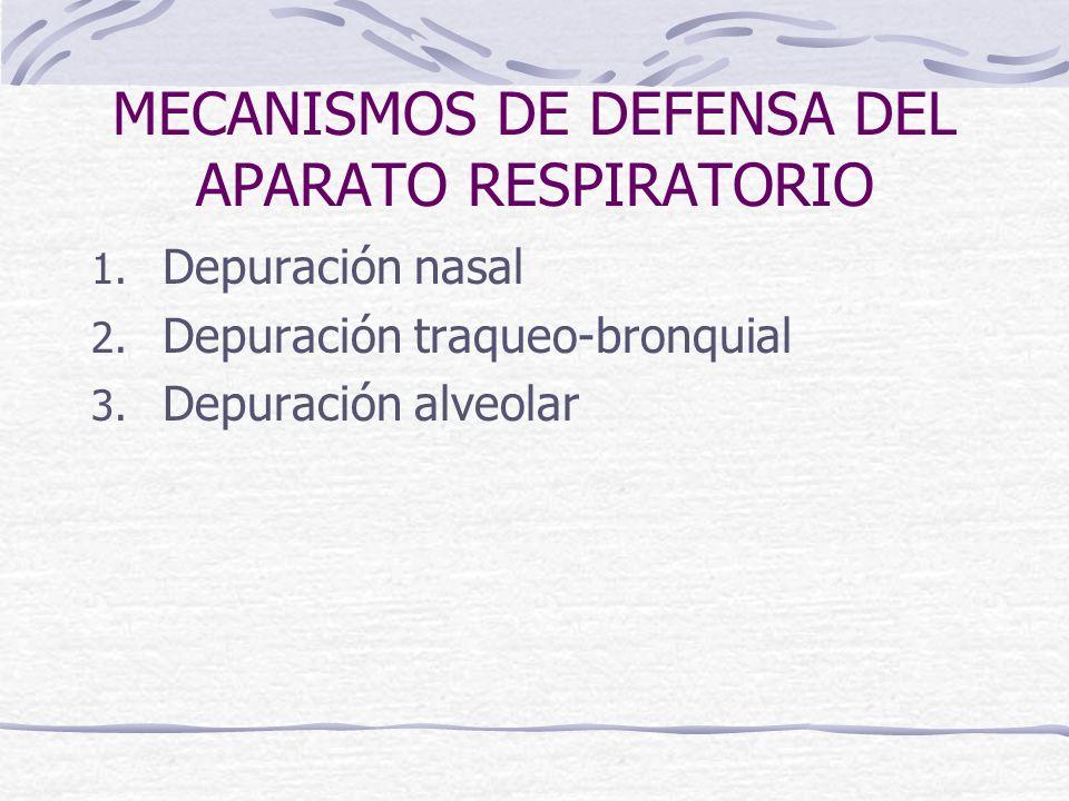 MECANISMOS DE DEFENSA DEL APARATO RESPIRATORIO 1. Depuración nasal 2. Depuración traqueo-bronquial 3. Depuración alveolar
