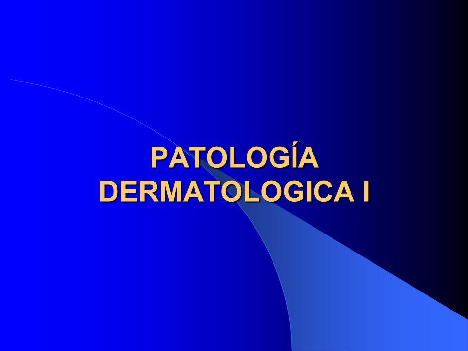 Términos Histológicos Hiperqueratosis – Paraqueratosis – Acantosis – Disqueratosis – Acantolisis – Picnosis – Cariorrexis – Espongiosis – Exocitosis