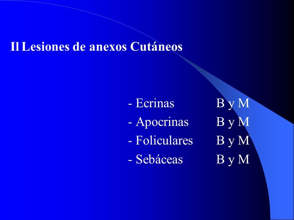 III ALesiones Pigmentadas Benignas - Nevus- Dérmico - Unión - Compuesto - Azul - Spitz - Atípico (Clark) III BLesiones Pigmentadas Malignas - Melanomas- Extensión superficial 65% - Nodular 15% - Lentiginoso acral 5% - Léntigo maligno 10%
