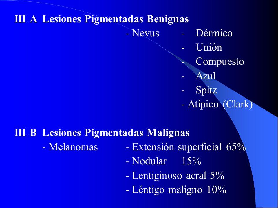 IVLesiones Mesenquimáticas Benignas- Hemangiomas - Lipomas - Fibrohistocitoma - Neuromas - Neurofibroma - Neurilemoma Malignos- Dermatofibrosarcoma protuberans - Fibrosarcoma - Angiosarcoma - Sarcoma Kaposi