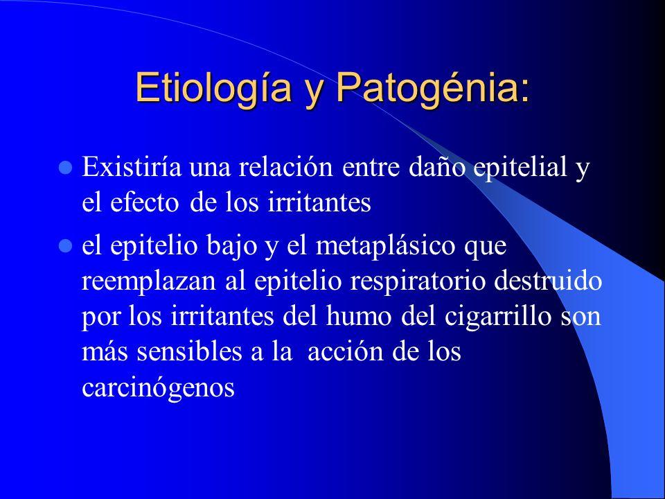 Etiología y Patogénia: Atipia e Hiperplasia10% en fumadores Epitelio Bronquial02% fumadores de cigarrillos con filtro 15% de los que mueren por Ca. pu