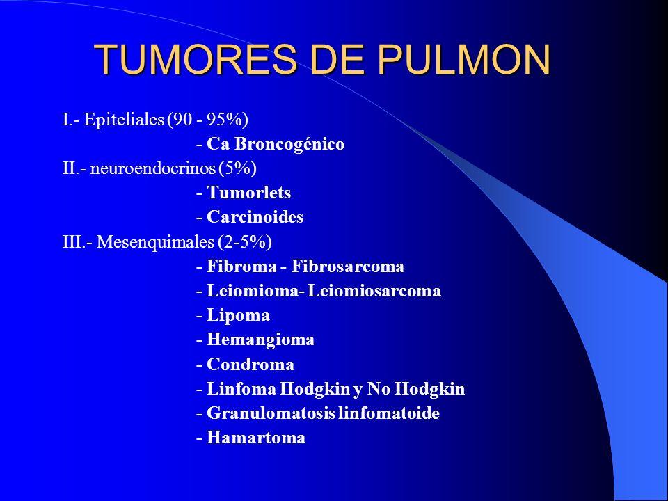 CANCER PULMONAR En el pulmón hay tumores malignos y benignos pero la inmensa mayoría son carcinomas broncógenos (90 al 95%)