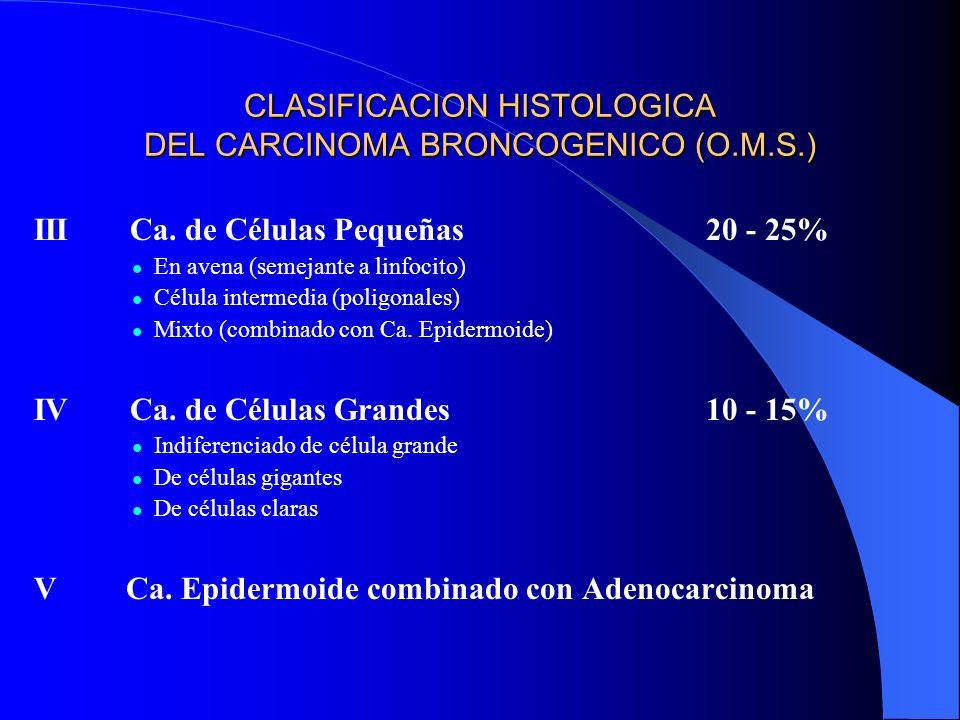 CLASIFICACION HISTOLOGICA DEL CARCINOMA BRONCOGENICO (O.M.S.) ICarcinoma Epidermoide 25 - 40% a) bien diferenciado b) moderadamente diferenciado c) po