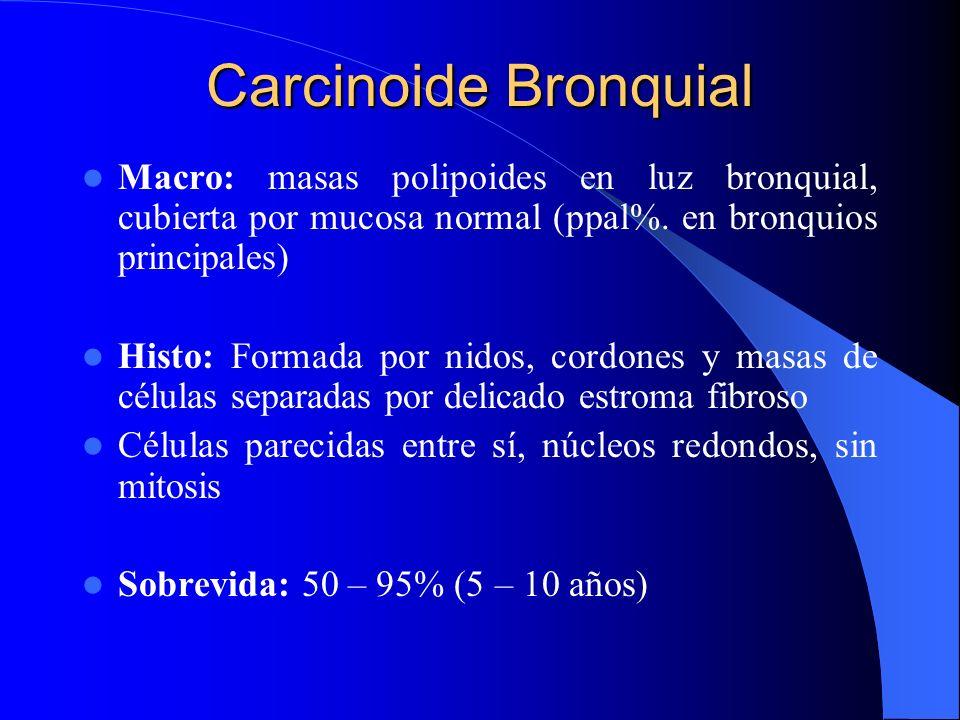 Carcinoide Bronquial En menores de 40 años Igual en ambos sexos Diferenciación neuroendocrinas de las células de Kulchitsky de la mucosa bronquial. Gr
