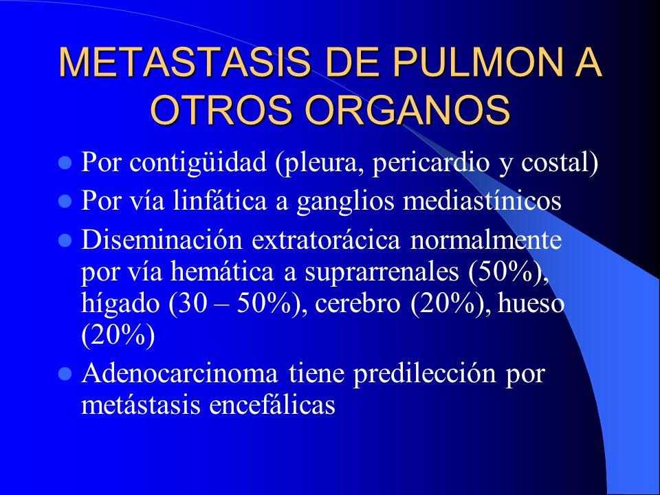 OTROS TUMORES Hamartoma pulmonar: Tumor benigno. Es un nódulo, de 3 a 4 cm de diámetro Histo: Formado por cartílago maduro, a veces con hendiduras tap