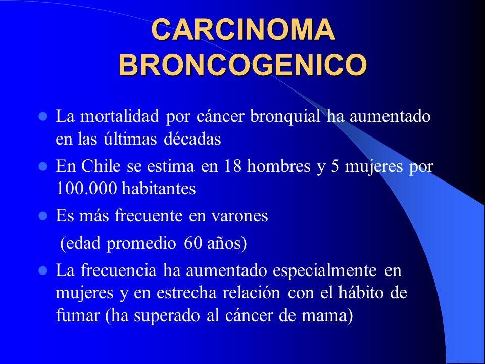 CARCINOMA BRONCOGENICO El término Broncogénico indica que el origen de estos tumores es el Epitelio Bronquial (y a veces Bronquiolar). En países indus