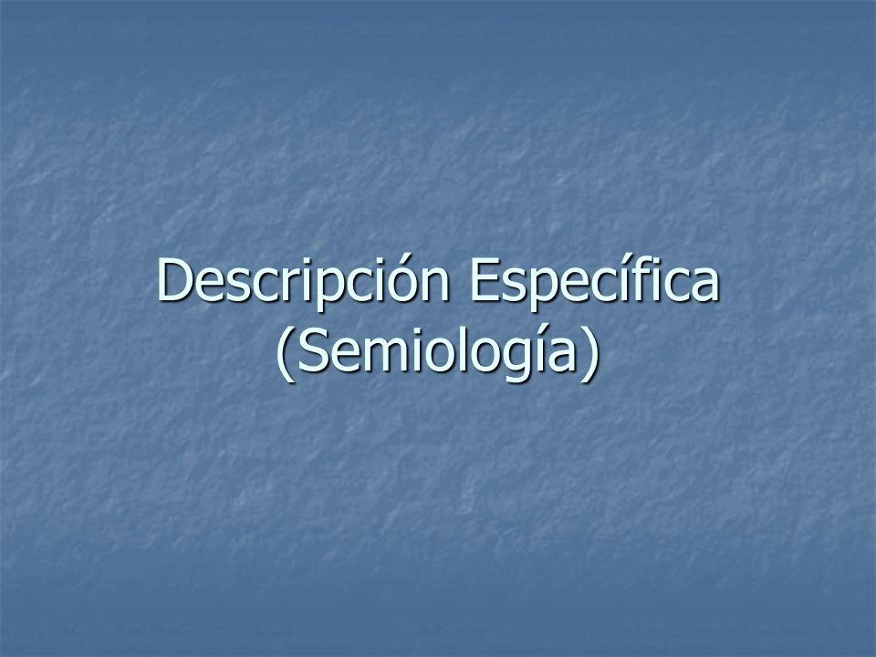 Descripción Específica (Semiología)