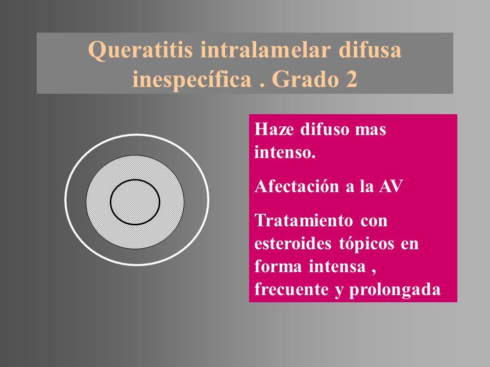 Queratitis intralamelar difusa inespecífica. Grado 2 Haze difuso mas intenso. Afectación a la AV Tratamiento con esteroides tópicos en forma intensa,