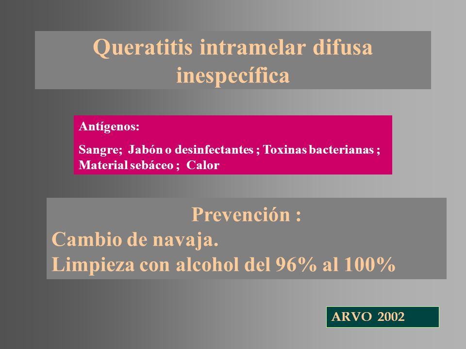 Queratitis intramelar difusa inespecífica Antígenos: Sangre; Jabón o desinfectantes ; Toxinas bacterianas ; Material sebáceo ; Calor Prevención : Camb