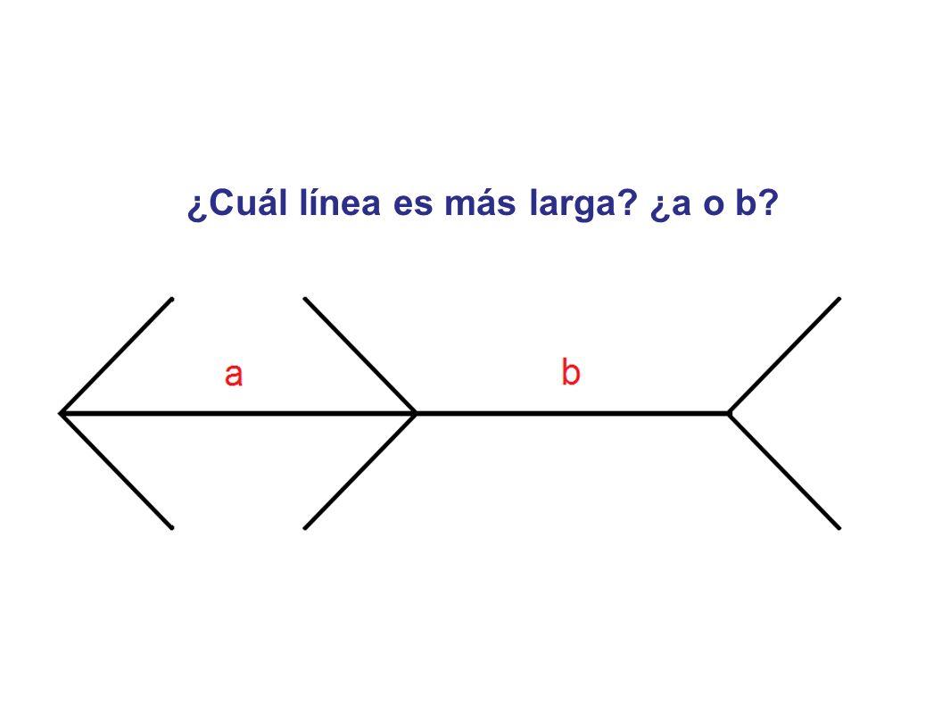 ¿Cuál línea es más larga? ¿a o b?