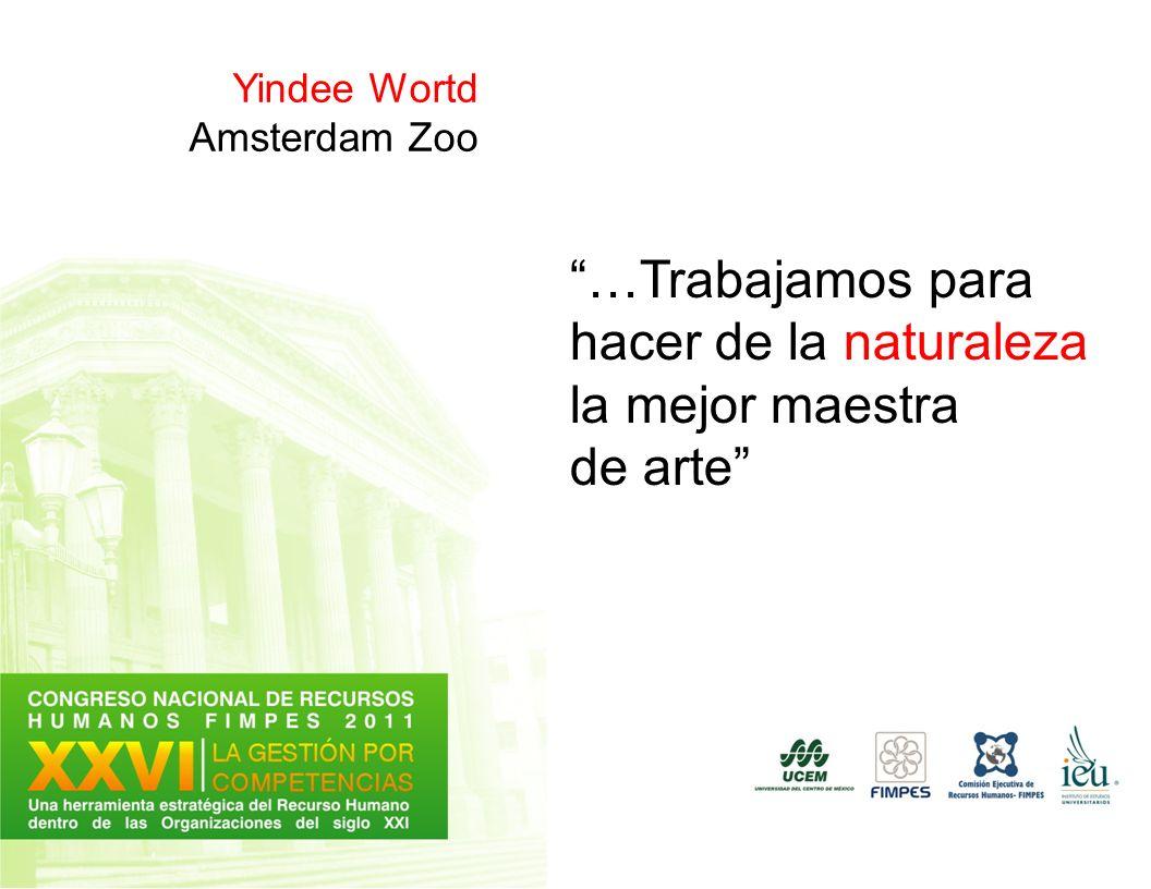 Yindee Wortd Amsterdam Zoo …Trabajamos para hacer de la naturaleza la mejor maestra de arte