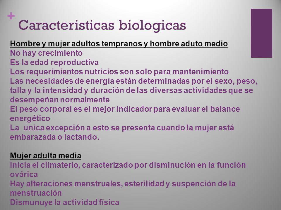 + Caracteristicas biologicas Hombre y mujer adultos tempranos y hombre aduto medio No hay crecimiento Es la edad reproductiva Los requerimientos nutri