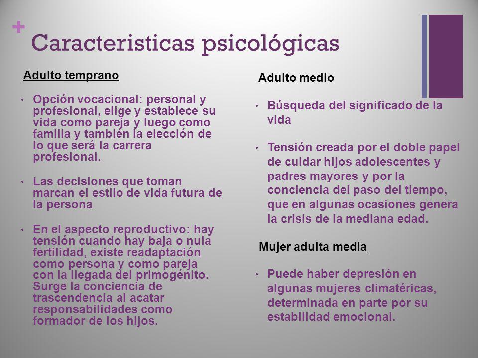 + Caracteristicas psicológicas Adulto temprano Opción vocacional: personal y profesional, elige y establece su vida como pareja y luego como familia y