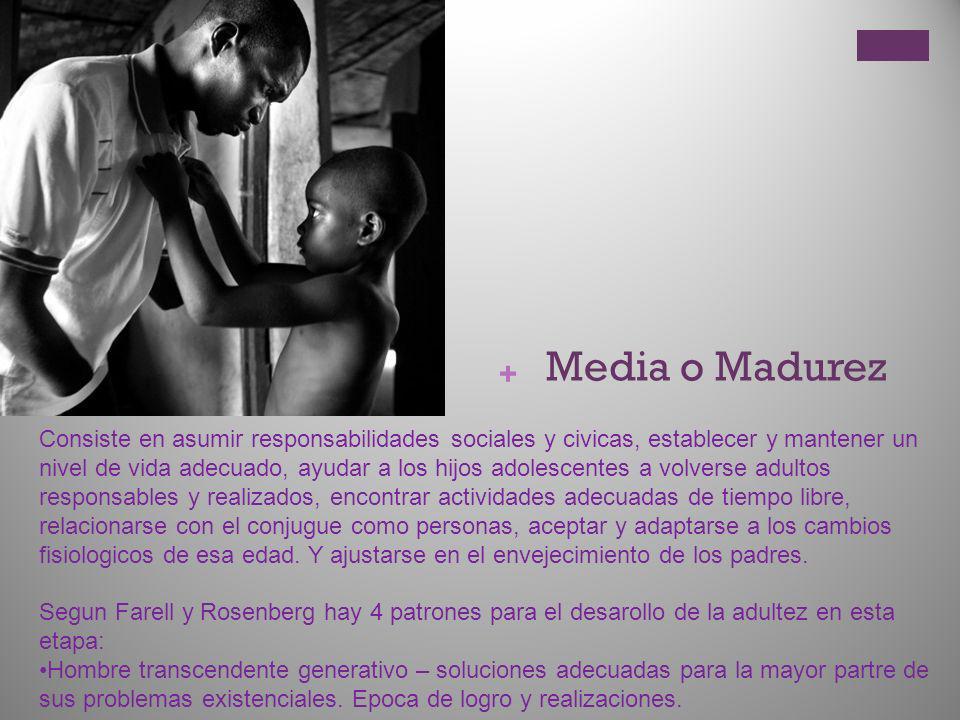 + Media o Madurez Consiste en asumir responsabilidades sociales y civicas, establecer y mantener un nivel de vida adecuado, ayudar a los hijos adolesc