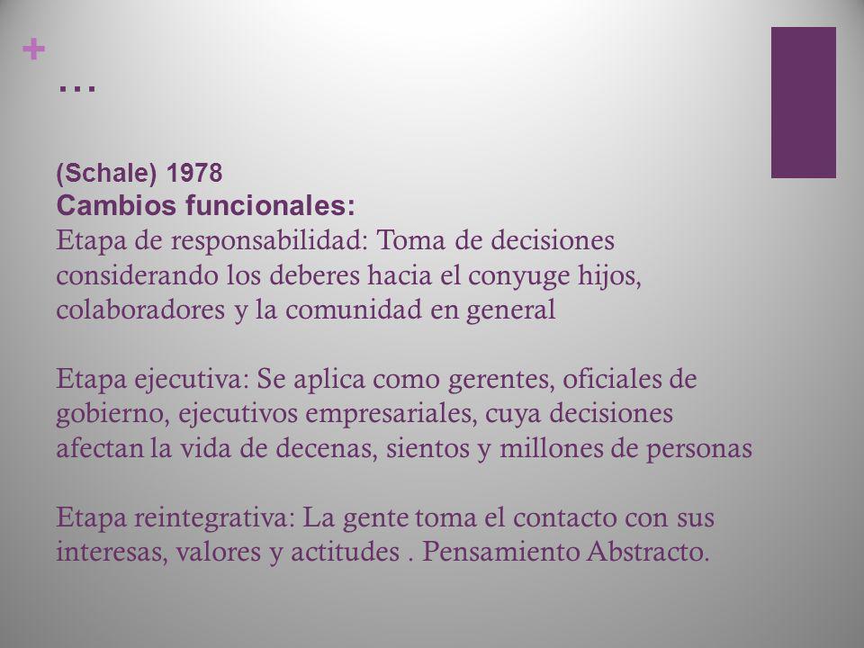 + … (Schale) 1978 Cambios funcionales: Etapa de responsabilidad: Toma de decisiones considerando los deberes hacia el conyuge hijos, colaboradores y l